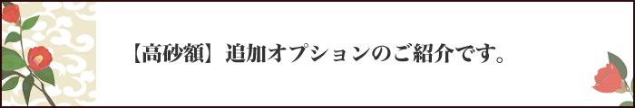 グレードアップオプション紹介